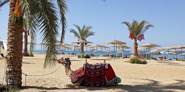 Three Corners, Egypte