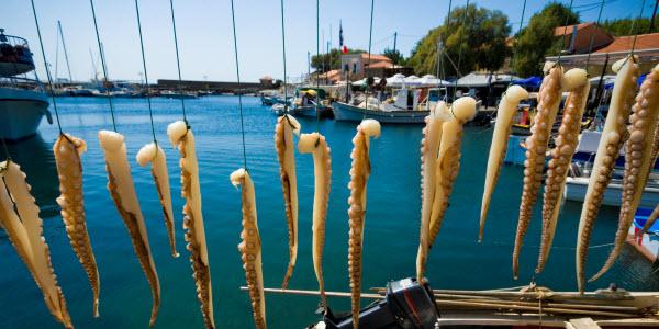Haven van Skala Sikaminea - Lesbos