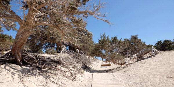 Chrissi Beach – Kreta – Griekenland