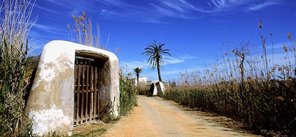 vacances à Ibiza ses seixes