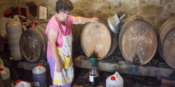 Winery Costa Brava