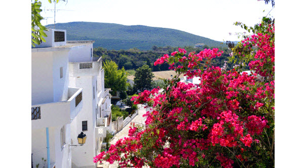 Sunweb - Portugal - Algarve - Alte