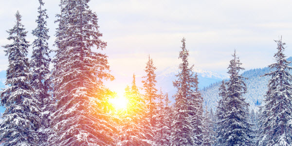 Sunweb - Oostenrijk - Zillertal - Early Bird Ski