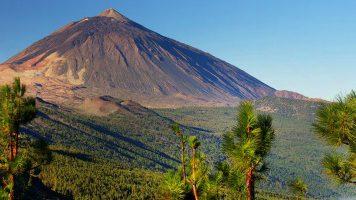 Sunweb - Tenerife - Natuur