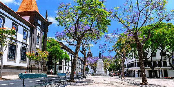 Straat in Funchal, de hoofdstad van Madeira