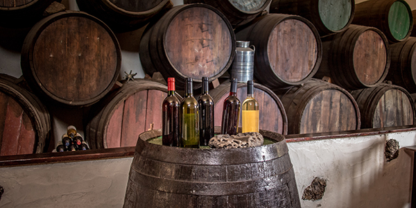 Lanzarote wijnproeven 2